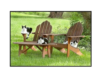 Cats, nature photography, Black and white cat, Funny, Fun, Summer, Green, Black, White  Note Card,  Blank Inside, Greeting Card, SET OF 4