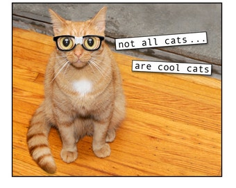 Cats, photo collage, mixed media collage, Nerd, Funny, Geek, Fun, Orange, Nerd Glasses, Note Card, Blank Inside, SET OF 4