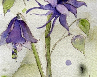 Columbine Watercolor Botanical Art Print, 8 x 10 Columbine Print