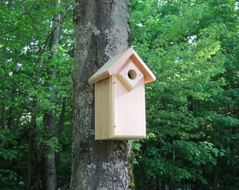 Eastern Bluebirds,  Birdhouse with entrance hole guard.