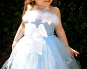 Cinderella inspired tutu dress  costume.