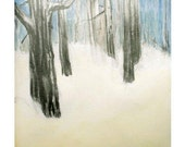 Trees - Winter Forest