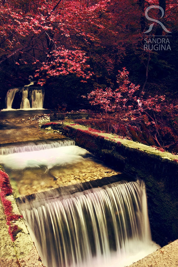 Red colors of autumn, surreal, red trees and river, small waterfall, forest, print you can frame for your wall