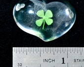 SALE - Lucky in Love - Real 4  Leaf Clover Charm - Double Drilled Heart - was 5