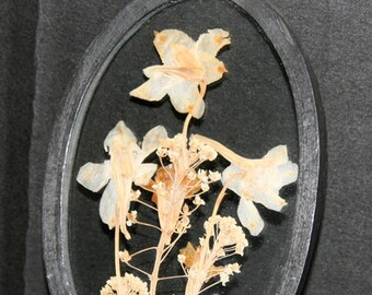 Pressed Flowers in Glass with Oval Frame