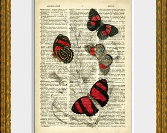 BUTTERFLY COLLAGE 3 - Book Page Print - an upcycled antique dictionary page with an antique insect illustration - wall art