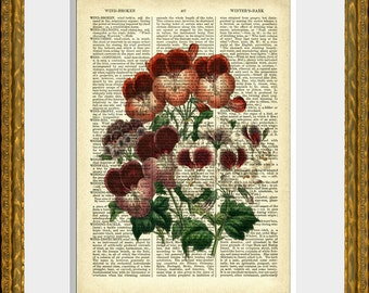 FLOWER BOUQUET 6 - Botanical Book Page Print - an upcycled antique 1800's dictionary page with an antique flower illustration - wall art