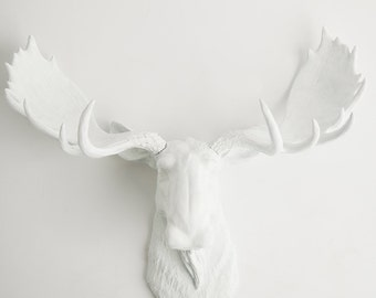Faux Taxidermy Moose Head - The Edmonton - White Resin Moose Head by White Faux Taxidermy - Chic Fake Animal Head Hanging Wall Decor
