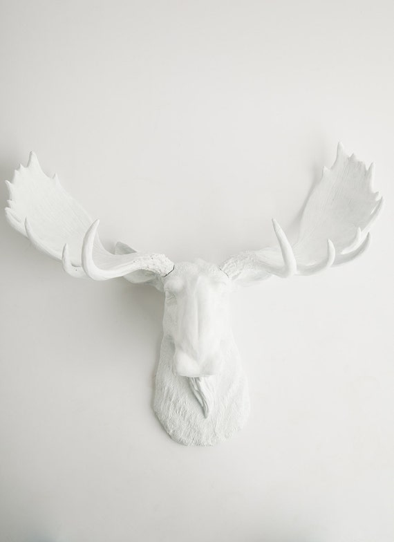 White Moose Head w/White Antlers - Faux Taxidermy - Chic & Trendy
