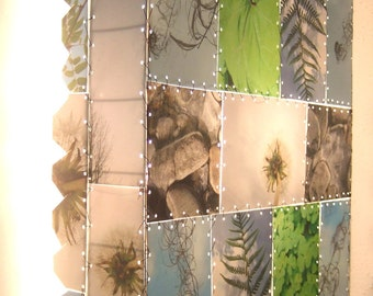 Nature wall lamp photos mosaic dandelion, art, blue-green. handmade, laminated photos