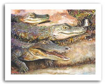 "Alligator Art Print ""Alligators and Butterfly"" Prints Signed and Numbered"