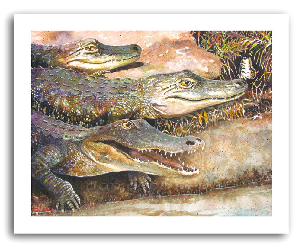 Alligator Art Print Alligators And Butterfly