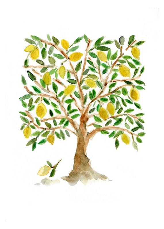 Lemon plant drawing the image kid has it for Lemon plant images