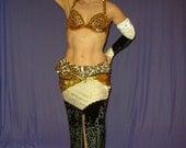 Belly Dance Costume, Velvet Belly Dance Skirt, Swarovski Rhinestones, Black Velvet Belly Dance Skirt, Sale Belly Dance Costume