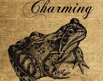 INSTANT DOWNLOAD Prince Charming Frog Vintage Illustration - Image Transfer - Digital Collage Sheet by Room29 - Sheet no. 611