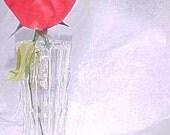 Vintage Tiara Fostoria Lead Crystal Vase New in Box 6 Inch