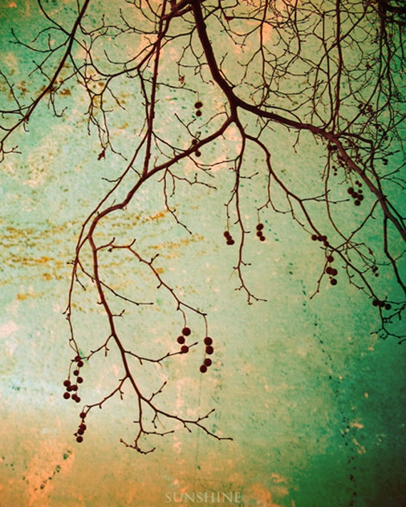 Digital download Winter photography Rustic photo Autumn Tree branches wall decor rusty mint green teal tan Printable art