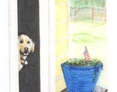 Fourth of July Card Yellow Labrador Fine Art Print Greeting Card from Original Illustration Patriotic 4th of July card