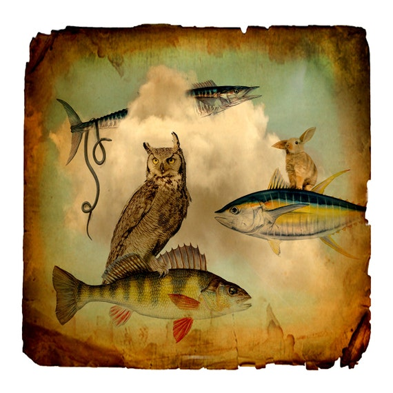 photo collage, mixed media collage, nursery, owl, fish, rabbit, stormy, sepia, cream, brown, nature, clouds, surreal, 8x8 Photo Print