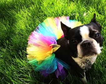 Dog Tutu: Spring Rainbow (Pink, Orange, Yellow, Green, Turquoise, Purple) Doggie Tutu