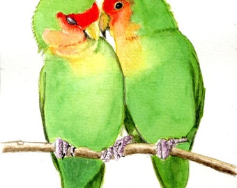 Peach faced lovebirds 5x7 PRINT from original watercolor, birds, art collectibles earthspalette