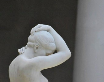 photographic print: NYC's Metropolitan Museum of Art