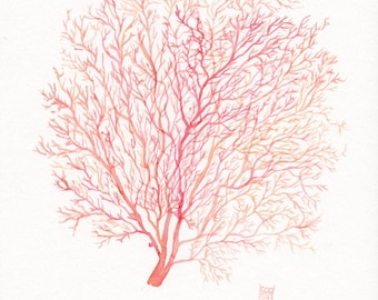 Red Coral Sea Fan giclee print, watercolor illustration - Beach cottage decor in red, pink and orange - Fine art reproduction, A5, A4, A3