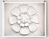 """SALE! Paris Photography, """"Stone Flower"""" Paris Print, Large Art Print Fine Art Photography"""