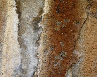 Rock Streaks Rust Taupe Abstract Volcanic Geology Penitente Canyon Colorado Rustic Cabin Lodge Photograph