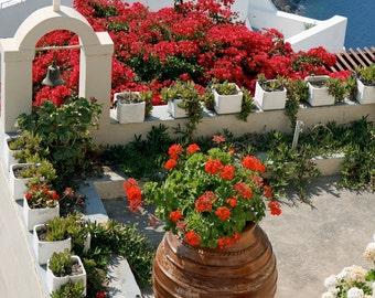 Mediterranean Decor - Oia Santorini Greece Photography Flowers Red Geraniums Photograph Rooftop Garden Photo Greek Travel Art Print