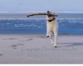 LABRADOR Greeting Card Dog Photography Yellow Labrador Runs on Beach Elated with Giant Stick Find