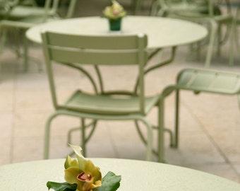 Paris Photography - French Cafe Photograph - Mint Green Decor - Bistro Art - Parisian Print - Photo - Kitchen Wall Art Travel