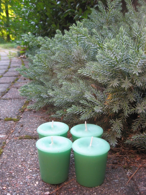 BLUE STAR JUNIPER (4 votives or 4-oz jar candle)