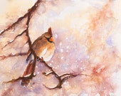Cardinal Bird Art - MAGICAL Winter Female Cardinal - Snowy Day - Watercolor Giclee Print 8x10