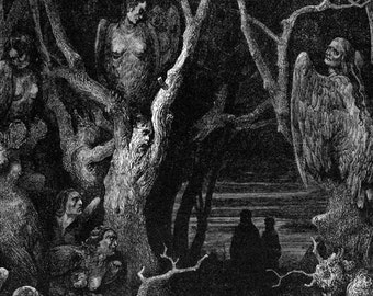 Harpies Forest Of Suicides Inferno Canto 13 Hell Gothic Vintage Engraving Gustave Dore'