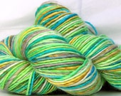 Yarn HandSpun Yarn Merino Wool Tencel single ply yarn Summer's End 170 yards