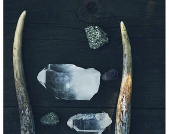 Home Decor - Rustic Decor - Rustic Art - Fine Art Photograph - Nature Photography - Autumn Art - Pyrite and Light - Antler Art - Modern Art