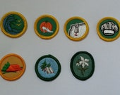 Girl Scout Badges Patches