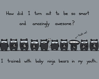 Baby Ninja Bears Greeting Card