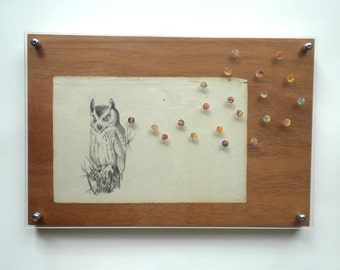 owl - original art - drawing, collage