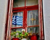 Photograph red cobalt blue window flowers Greek Flag  greece travel wall decor