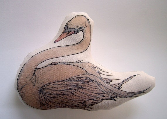 Rose - A Young Swan V