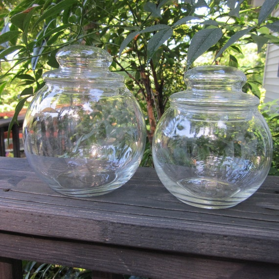 Vintage Apothecary Jars - Candy Buffet
