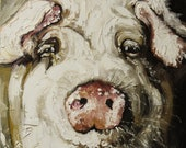 16x20 Print of oil painting Pig 5 by Roz