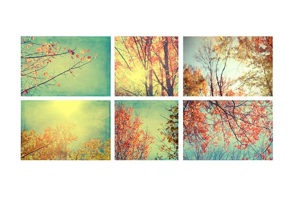 Fall Landscape Wall Decor, Red, Gold, Woodland Art Print Set, Rustic Decor, Autumn Photography, Nature Photography Set