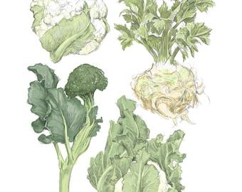 "Winter Vegetables Illustration Reproduction 8"" x 10""- Farmer's Market Wall Art"