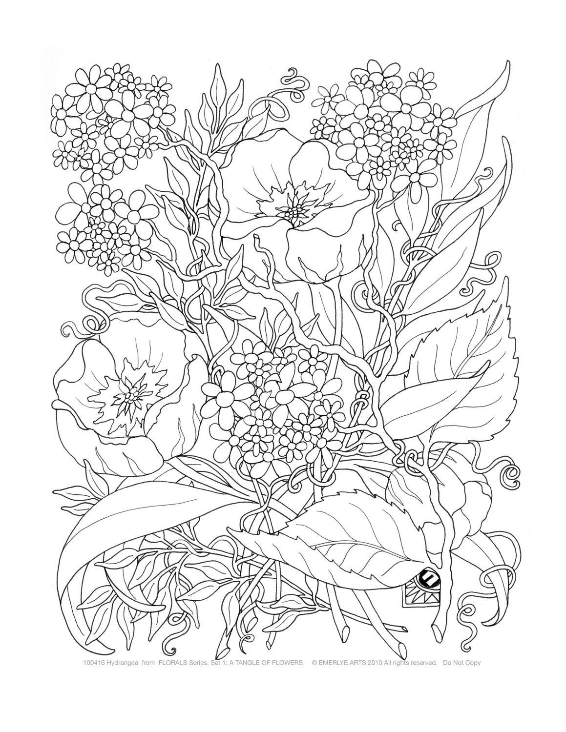 Adult coloring a tangle of flowers set of 8 by emerlyearts for Coloring pages for adults difficult flower