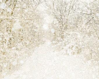Winter decor, snow, white wedding, winter decor, neutrals, tree photo, snow, forest, woodland, snowflake - Nowhere 5x7