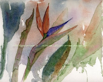 Watercolor Painting Floral Art, Floral Painting, Floral Watercolor, Abstract Floral Art, Floral Art Print Titled Bird of Paradise