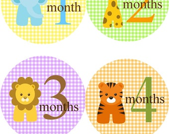 Baby Monthly Stickers...Baby Month Stickers for Boy or Girl/Jungle Zoo Animals/ 12 Month Stickers for Little Ones/Baby Shower Gift